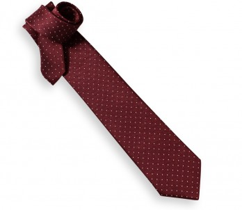 Burgundy Tie with White Mini Dots - Washington II