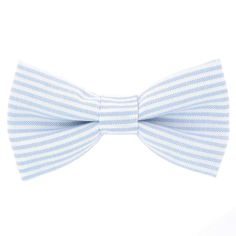 Bow Tie with Light Blue Stripes The Nines